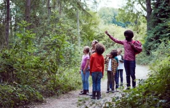Classroom doing STEM education outdoors