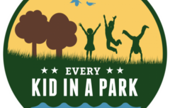 Every Kind in a Park