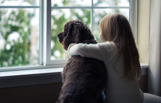 Girl and her dog in the window